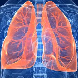 Peptide products for the lungs