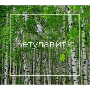 Бетулавит® - экстракт бересты