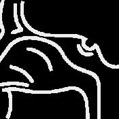 Патология лор-органов