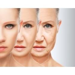 Цитомаксы - Экспресс-профилактика преждевременного старения 2-3 раза в год